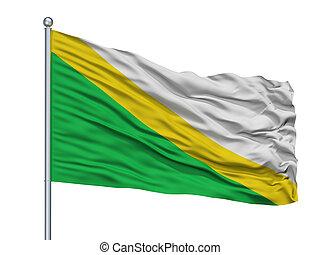 Medina City Flag On Flagpole, Colombia, Cundinamarca...