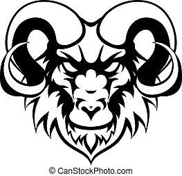 medio, carnero, animal, mascota