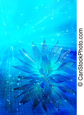 meditação, flor, abstratos