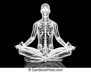 meditação, pose, ioga