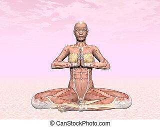 meditación, actitud del yoga, para, mujer, con, músculo, visible