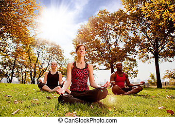 Meditation - A group of people meditation in a city park in...