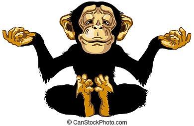 meditation, schimpanse, karikatur