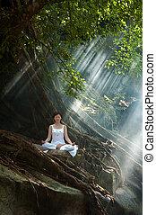Meditation, Ananda Yoga