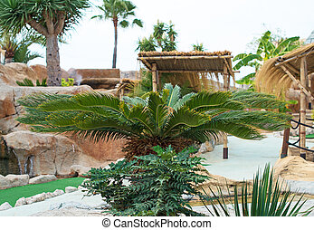 Mediterranean courtyard with palm tree.