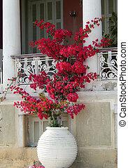 Mediterranean floral arrangement