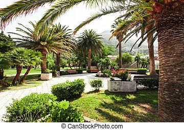 Mediterranean park - Path in the mediterranean park. St. ...