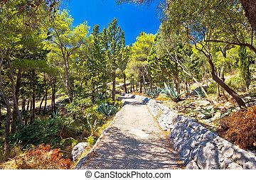 Mediterranean plants green landscape hill view