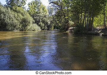 mediterranean river, alberche riverbank in Toledo, Castilla...