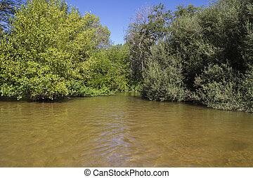 mediterranean river, alberche riverbank in Toledo, Castilla La Mancha, Spain