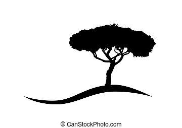 mediterranean vector umbrella pine tree silhouette