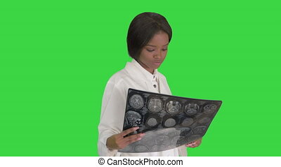 Young african american female doctor looking at xray while walking on a Green Screen, Chroma Key.