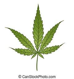 medizin, marihuana, grünes blatt, freigestellt, aus, weißes, hintergrund., cannabis, vektor, illustration.
