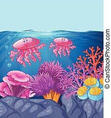 medusa, oceano