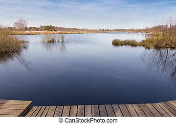 Meerbaansblaak lake in national park De Groote Peel in The...