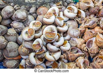 meeresfrüchte, markt