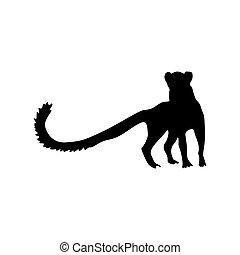 meerkat , περίγραμμα , μαύρο