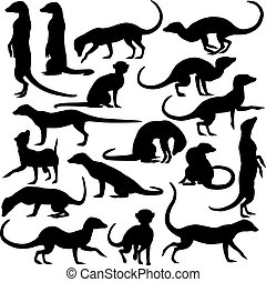 Set of editable vector silhouettes of meerkats in different postures