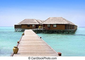 meeru, maldives, norte, recurso, atol