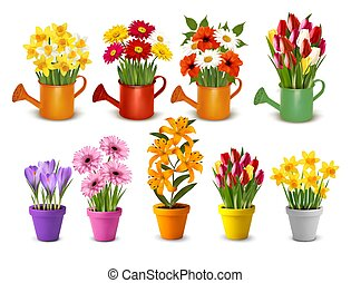Mega collection of spring and summer colorful flowers in pots and watering cans. Vector