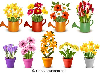 Mega collection of spring and summer colorful flowers in pots,  watering cans and vases. Vector