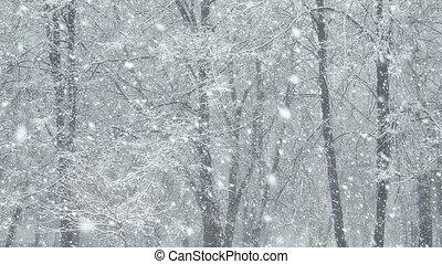 Mega extra big global snowfall loop tree winter forest