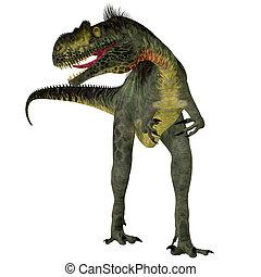 Megalosaurus on White