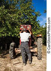 megjavítás, idősebb ember, övé, traktor, farmer