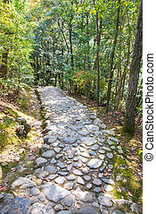 megkövez, ólmozás, lefelé, lépések, arashiyama, folyó