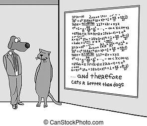 meglio, gatti, paragonato a, cane