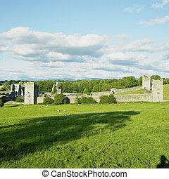 megye, kells, priory, kilkenny, írország