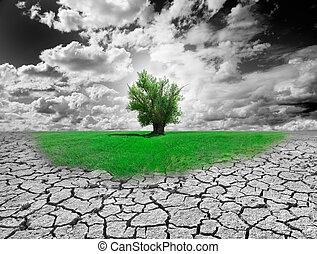 meio ambiente, conceito