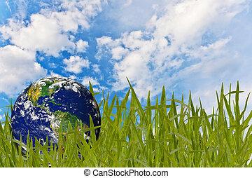 meio ambiente, conceito, globo, em, a, capim