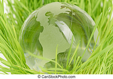 meio ambiente, conceito, globo vidro, em, a, capim