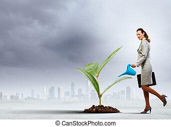 meio ambiente, proteção