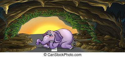 meio, elefante, estrada, horrorizado