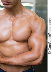 meio, muscular, homem, close-up, seção, shirtless