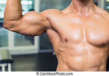 meio, muscular, homem, seção, ginásio, shirtless