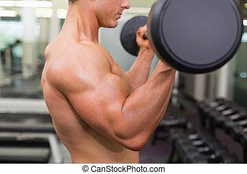 meio, muscular, homem, seção, levantamento, shirtless, barbell