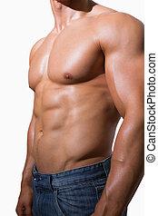 meio, muscular, homem, seção, shirtless