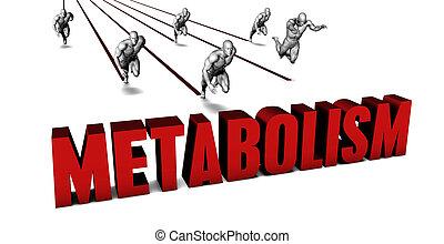 mejor, metabolism