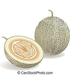 melão, fruta