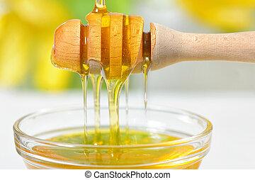 mel, dourado, gotejando