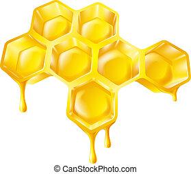mel, gotejando, favo mel