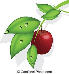 mela, rosso