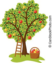 mela, scala, albero, frutte, singolo, vettore, disegno, cesto
