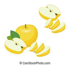 mela, slices., illustrazione, fondo., vettore, mele, mezzo, bianco