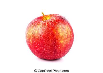 mela, su, fondo, fresco, chiudere, bianco rosso