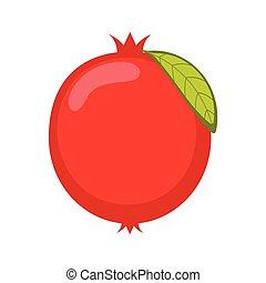 melagrana, vettore, frutta