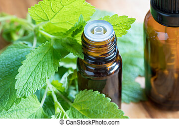 Melissa essential oil with fresh melissa leaves